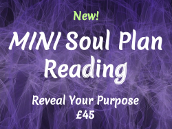 mini soul plan reading